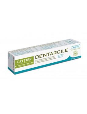 Dentargile Menthe